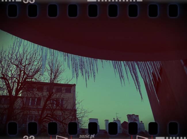 piękną zimę mamy tej wiosny…