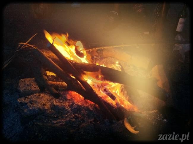 ognisko nad Wisła i rower Zazie