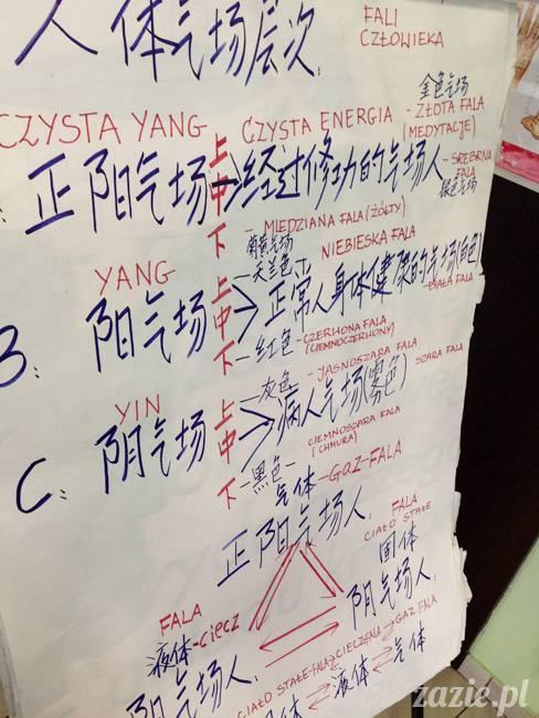 akupunktura, tradycyjna medycyna chińska, chińskie zioła, ziołolecznictwo, Klinika Mistrza Zhang, masaż leczniczy Tui Na, Qi Gong, shifu Zhang Feng Jun