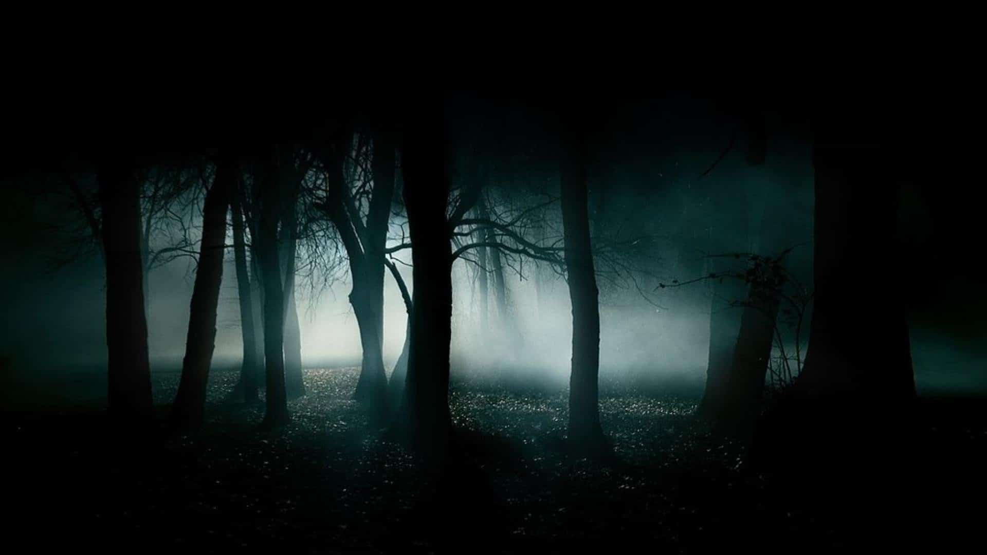 się ściemnia…
