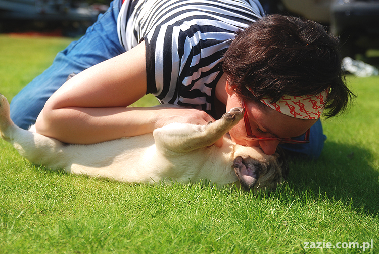 mopsy pugs Kumok i Miszur na trawie
