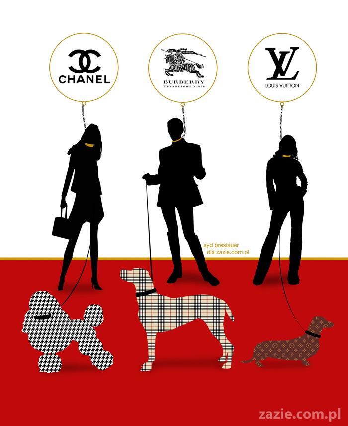 modne rasy psów trendy design