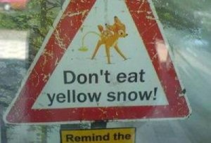 yellow-snow-warning1