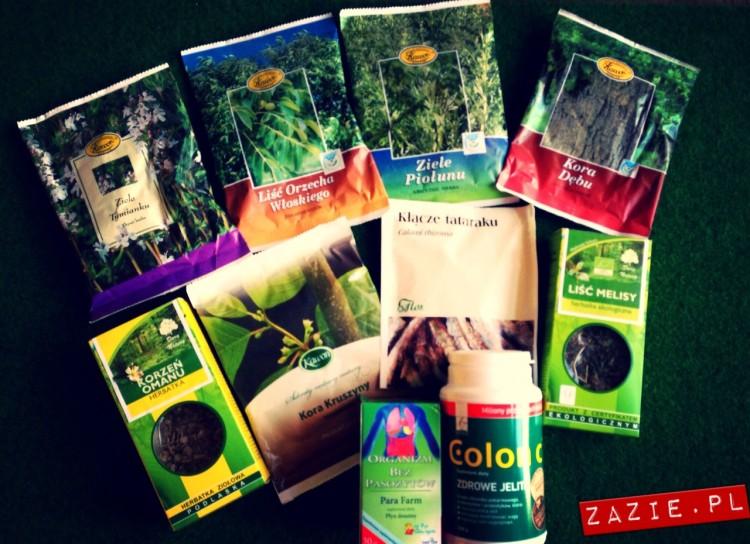 zazie_herbs
