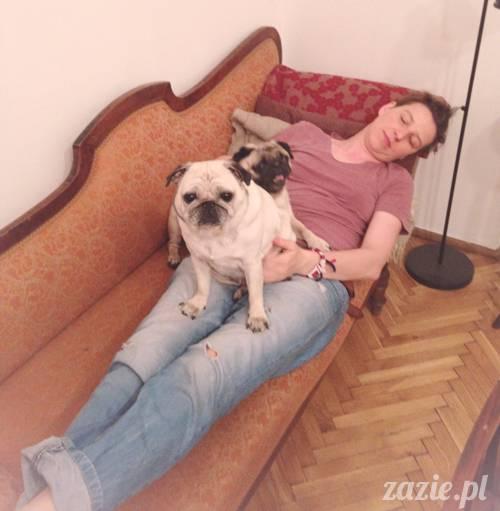 krakow_czerwiec_zazie_mopsy_14